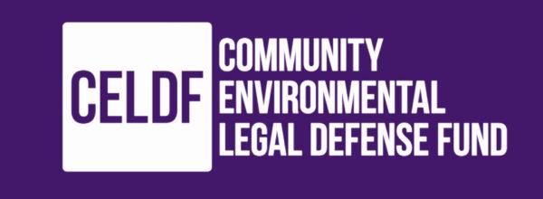 Newsletter: Updates on Defunding Violence