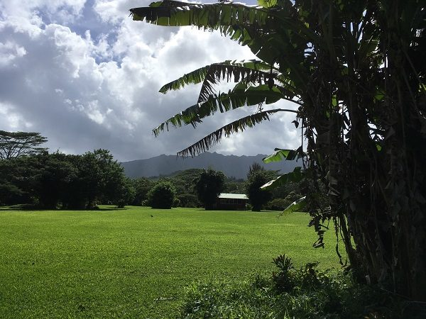 Press Release: First Rights of Nature Easement Established in Hawaii